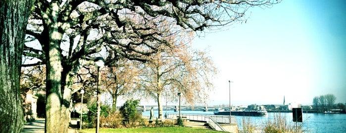 Rheinufer Mainz is one of Mainz♡Wiesbaden.