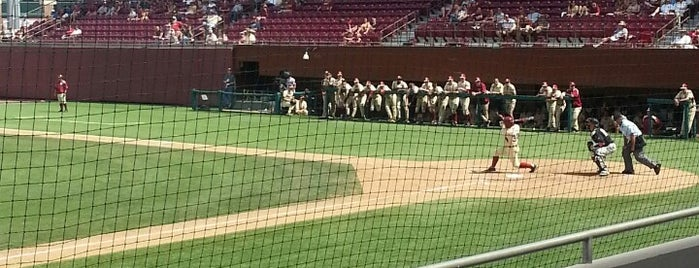 Dick Howser Stadium - Mike Martin Field is one of First Year at FSU Must Do's.
