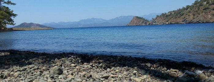 Kuleli Koyu is one of Cennet ve İlçeleri.