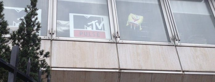MTV Networks France is one of Chaînes TV.
