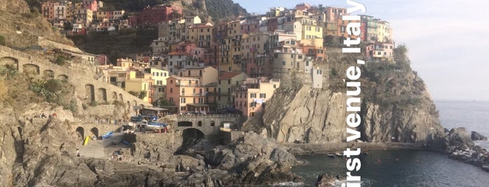 Cinque Terre Trekking is one of 2014.1.8-1.15 Italy.
