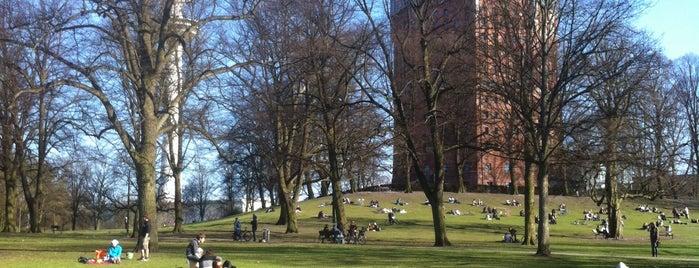 Sternschanzenpark is one of Best sport places in Hamburg.