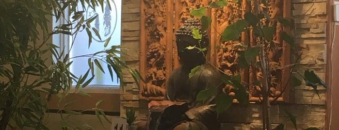 Saigon Lotus Restaurant is one of Toronto - Restaurants.