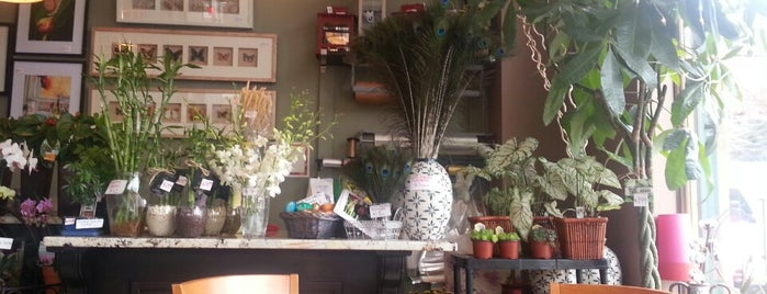 Sun Café & Flowers is one of No town like O-Town: Indie Coffee Shops.