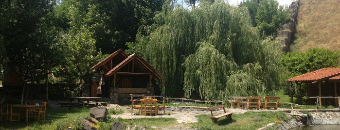 Cherkezi Dzor (Fish Valley) is one of Great food places.