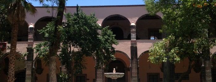 Instituto de Bellas Artes is one of SMA + GTO.