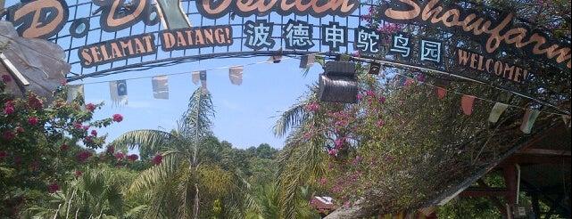 PD Ostrich Farm is one of Natural Farm / Park.