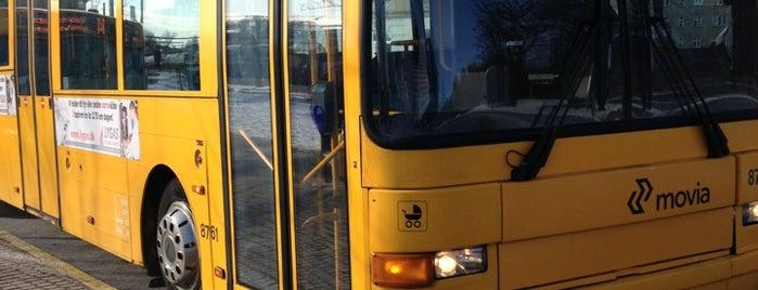 Bus 388 (Lyngby st. - Helsingør st.) is one of Lokale buslinjer i Hovedstadsområdet.