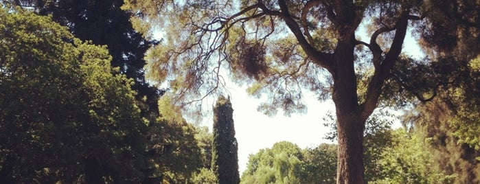 Adelaide Botanic Garden is one of Parks.