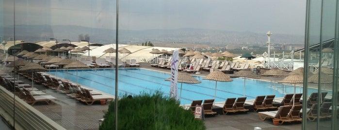 Salus is one of Ankara.
