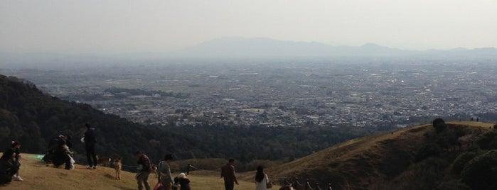 Mt. Wakakusa is one of Great outdoor in NARA.