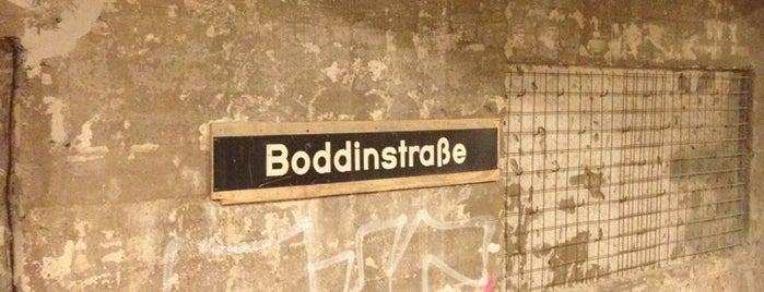 U Boddinstraße is one of U-Bahn Berlin.