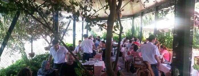 Köyüm Bahçe Restaurant is one of git.