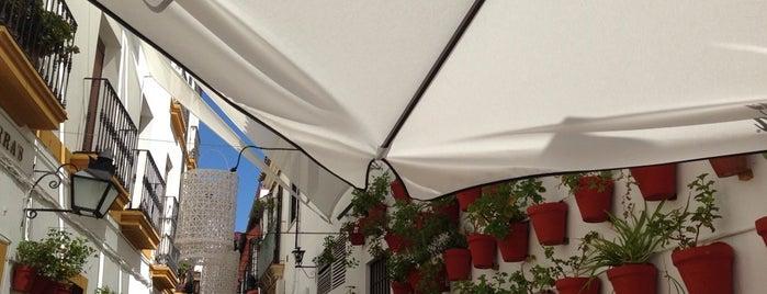Macsura is one of Planning Semana Santa Cordoba.