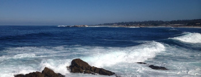 17 Mile Drive - Picnic Rocks is one of California Road Trip.