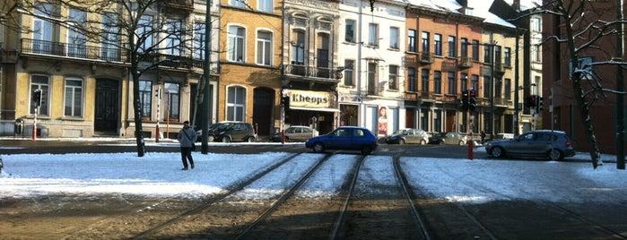Thomas (MIVB / STIB) is one of Belgium / Brussels / Tram / Line 25.