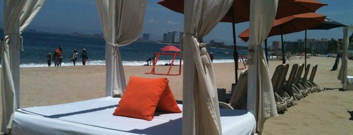 Mangos Beach Club is one of vallarta.