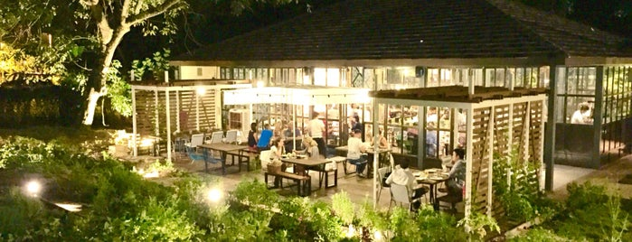 Open Farm Community is one of 54 Dog-friendly eateries in Singapore.
