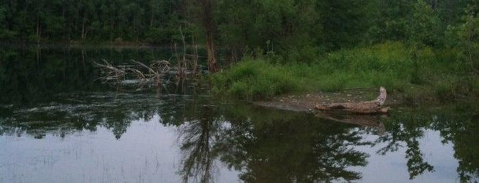 Prairie Oaks Metro Park - Beaver Lake Area is one of Columbus Area Parks & Trails.