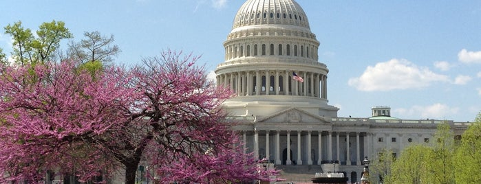 United States Capitol is one of Moderator Central.