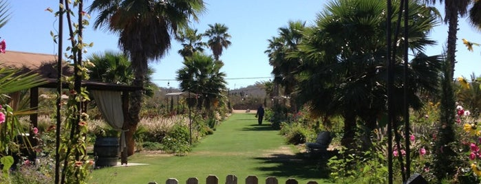 Flora's Field Kitchen is one of San Jose Del Cabo.