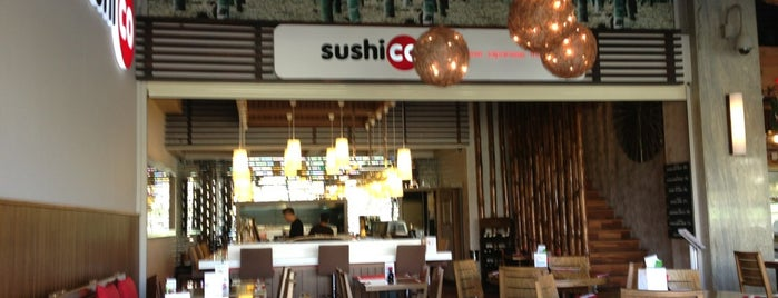 SushiCo is one of Ankara Highlights & Travel Essentials.