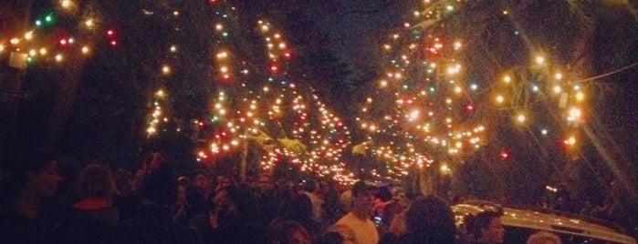 christmas tree lane santa rosa avenue