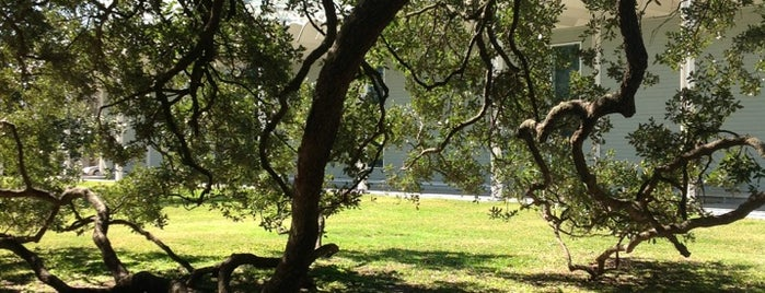 Menil Park is one of Off the beaten path & cool spots.