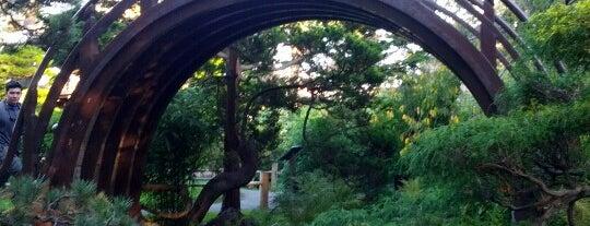 Japanese Tea Garden is one of around house.