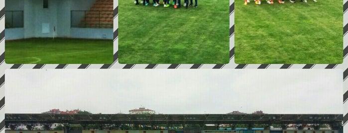 Maltepe Hasan Polat Stadı is one of İstanbul Stadyum ve Futbol Sahaları.