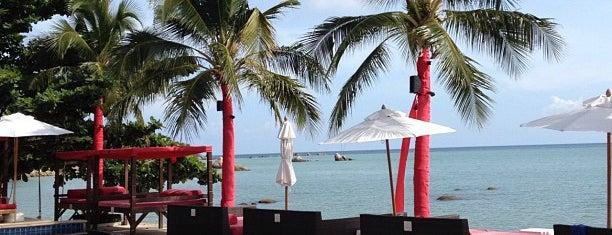 Beach Republic is one of Ko Samui Paradise = Peter's Fav's.