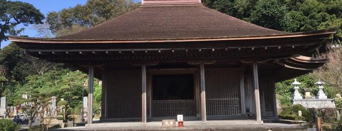 金蓮寺 弥陀堂 is one of 三河三十三観音.