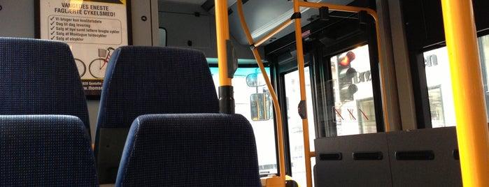 Bus 12 (Islev - Femøren st.) is one of Lokale buslinjer i Hovedstadsområdet.
