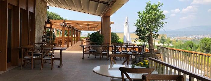 LA Mahzen Restaurant is one of Marmara & Ege Tatil 2017.