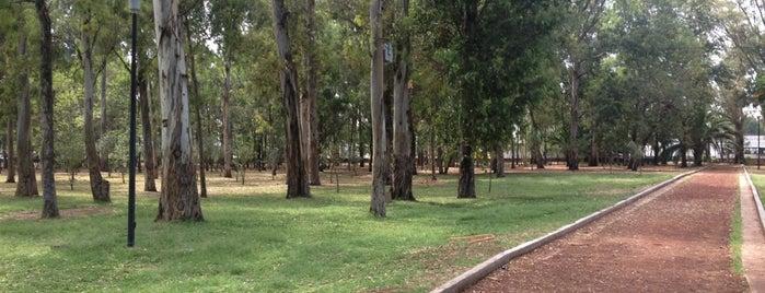 Parque González Gallo is one of Reto 100 ZMG.