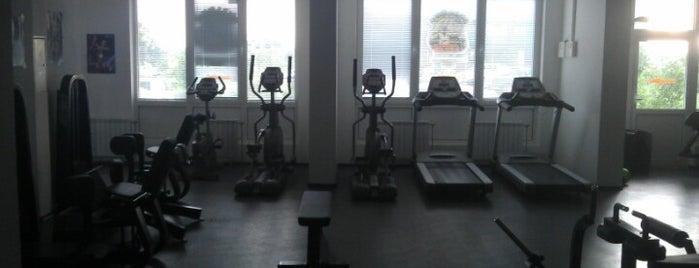 Bulldog Gym is one of Спортивные клубы.