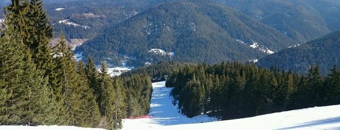 Чепеларе Ски Център (Chepelare ski center) is one of Ski Zones.