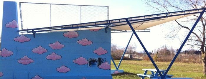 """Art Shark"" By Brendan Rose is one of Art in Syracuse."