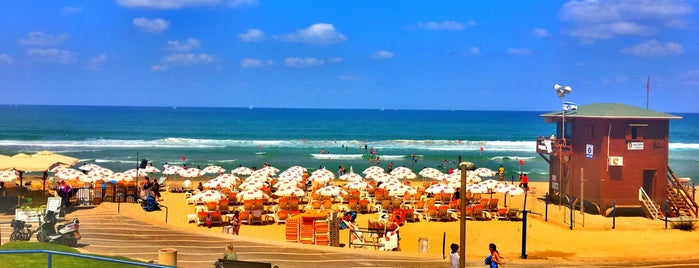 Hasharon Beach is one of To Do in Israel.
