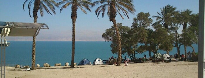 Ein Gedi is one of Israel.