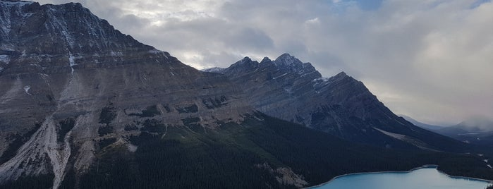 Lake Peyto is one of Canada Favorites.