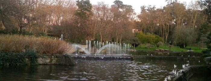Parque de Castrelos is one of Europa.