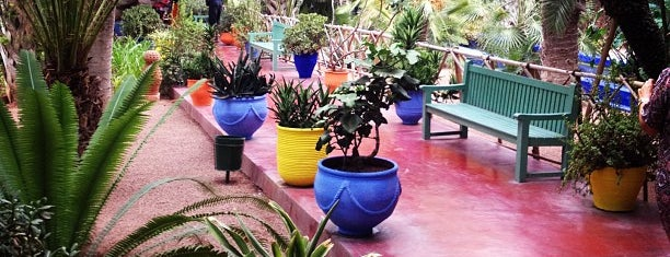 Majorelle Gardens is one of CBM in Morocco.