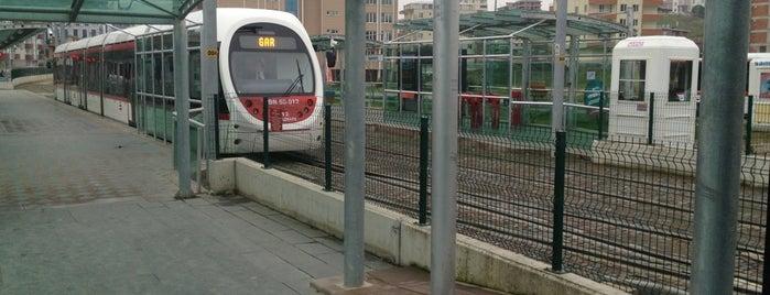 Üniversite Tramvay Durağı is one of Samsun'un Hafif Raylı Sistemleri.