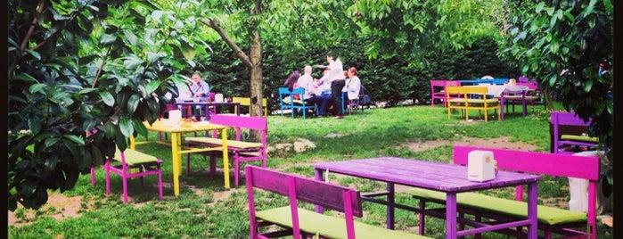 Cevizdibi Restaurant is one of Yemede yanında yat....