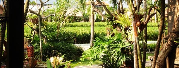 Bebek Tepi Sawah Restaurant & Villas is one of Bali.