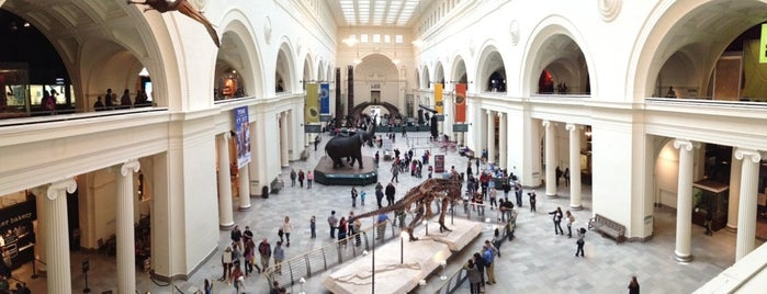 The Field Museum is one of Equinox 2013.