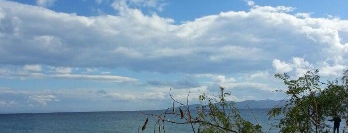 Sivrice Deniz Feneri is one of doğallık..