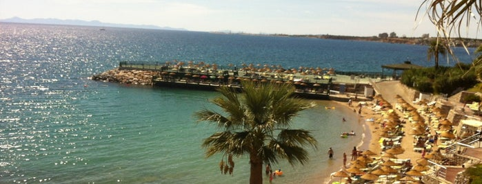 Palm Wings Beach Resort & Spa is one of Tatil.