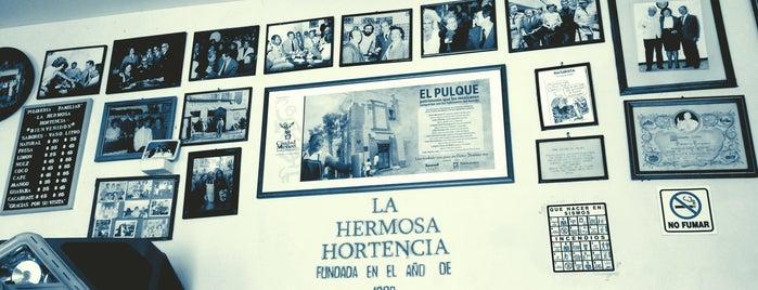 La Hermosa Hortensia is one of CDMX e Oaxaca.